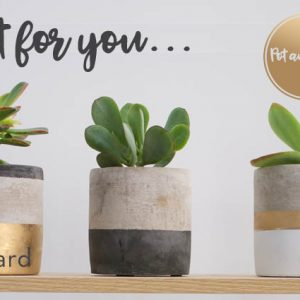 Just For You Plants Gift Card Design