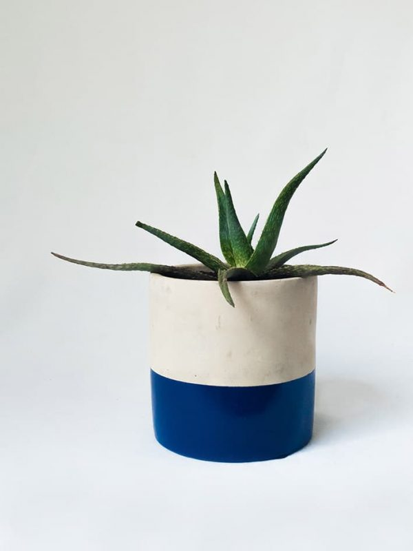 Deep Blue Dipped Succulent Concrete Pot
