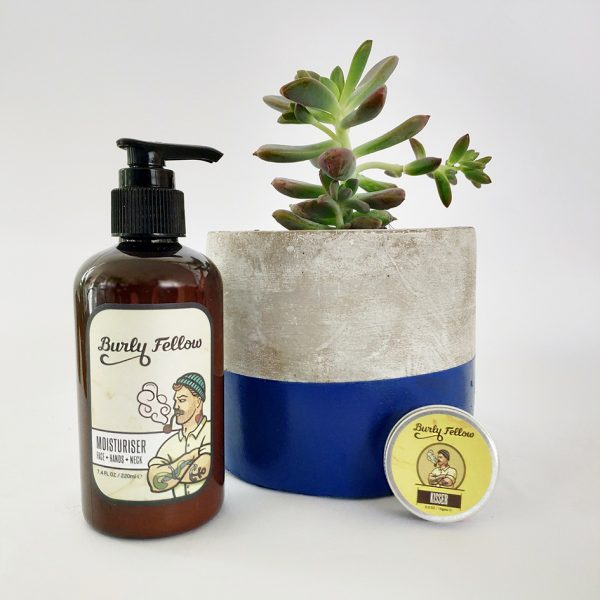 Strong But Gentle Gift Pack with a Succulent - Navy Blue Dipped Pot with a Succulent - Navy Blue Dipped Concrete Pot
