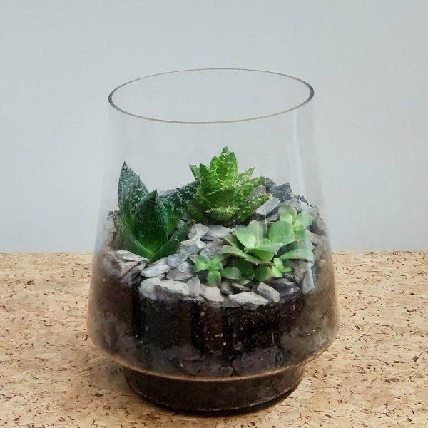 Conical Glass Terrarium