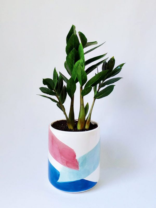Zanzibar Gem in Brushstrokes Planter