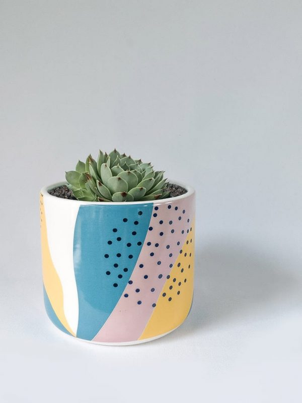 Memphis Succer – Ceramic Pot and Succulent