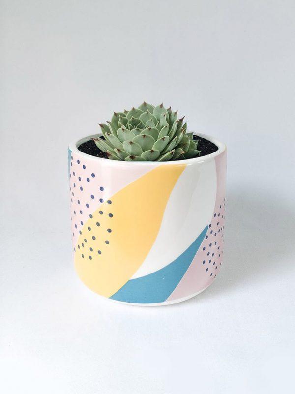 Memphis Succer – Ceramic Pot and Succulent